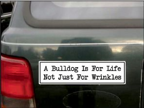 A Bulldog Is For Life Not Just For Wrinkles Bumper Sticker